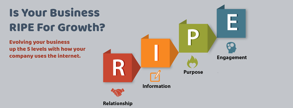 Infographic - RIPE - 4 Paths to Web based Leadership