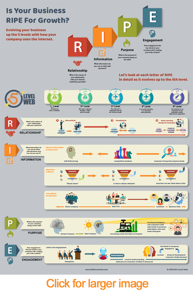 RIPE Infographic 5th level web leadership model